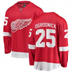 John Ogrodnick Detroit Red Wings Men's Fanatics Branded Red Breakaway Home Jersey