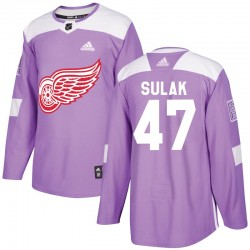 Libor Sulak Detroit Red Wings Men's Adidas Authentic Purple Hockey Fights Cancer Practice Jersey