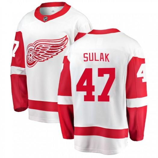 Libor Sulak Detroit Red Wings Youth Fanatics Branded White Breakaway Away Jersey