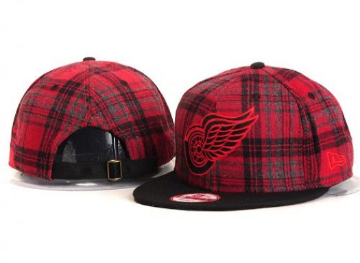 Detroit Red Wings Men's Stitched Snapback Hats 001