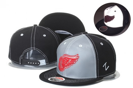 Detroit Red Wings Men's Stitched Snapback Hats 009