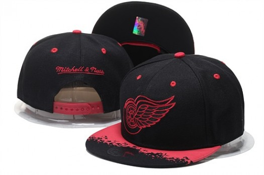 Detroit Red Wings Men's Stitched Snapback Hats 011